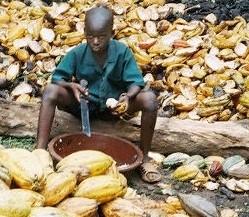 Mondelez cocoa child labor commitments